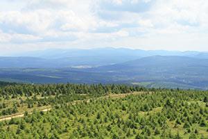 Landschaft im Isergebirge
